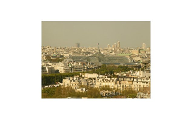 View of the Grand Palais from the Eiffel Tower © MAEE F. de La Mure