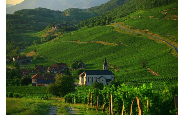 Alsace - Photos : Atout France / Franck Charel